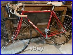 AMAZING Unused Bridgestone RB-1 Synergy Vintage Race bike Made In Japan